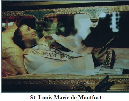 montfort2